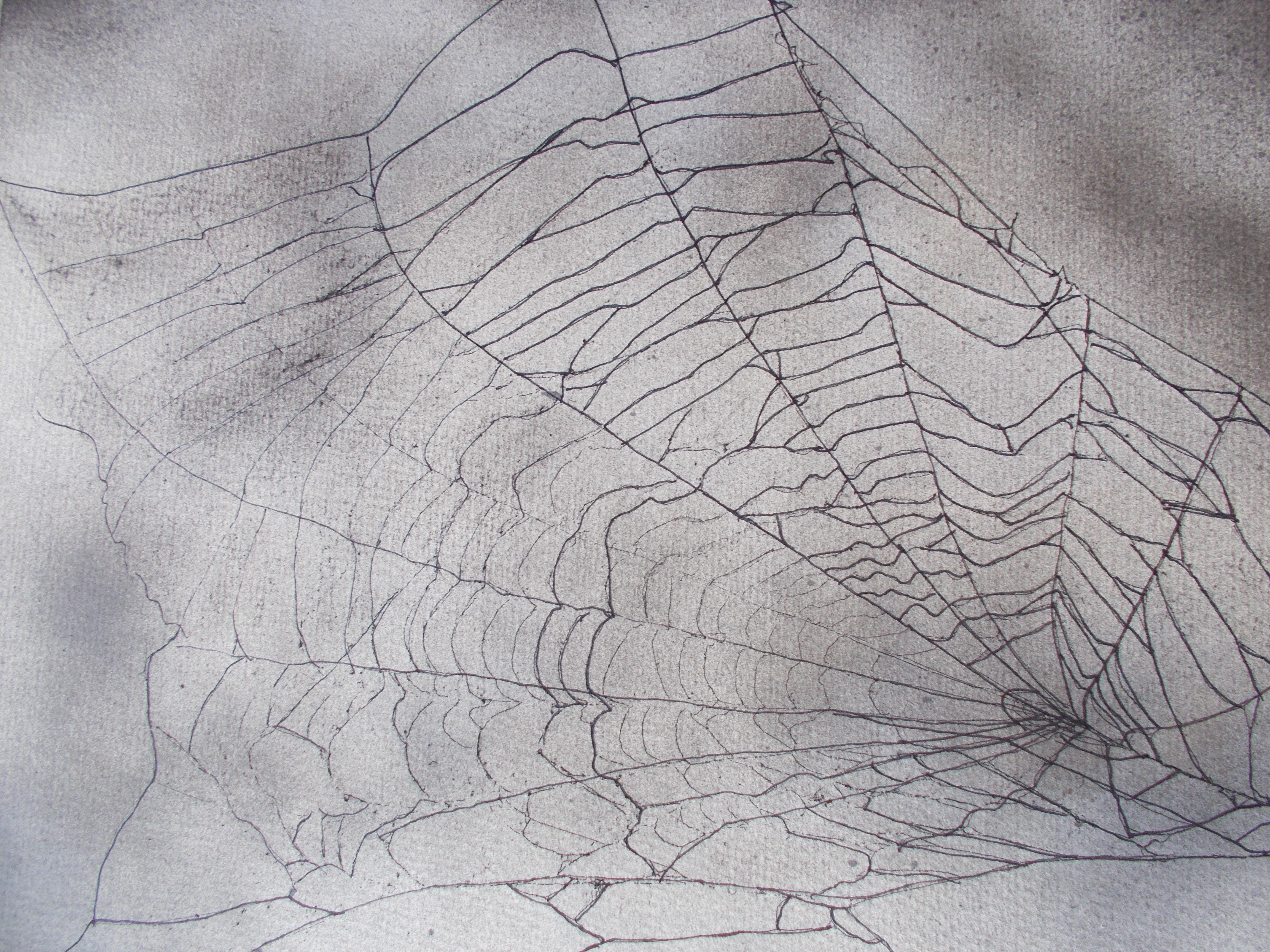 Netz in den Wolken