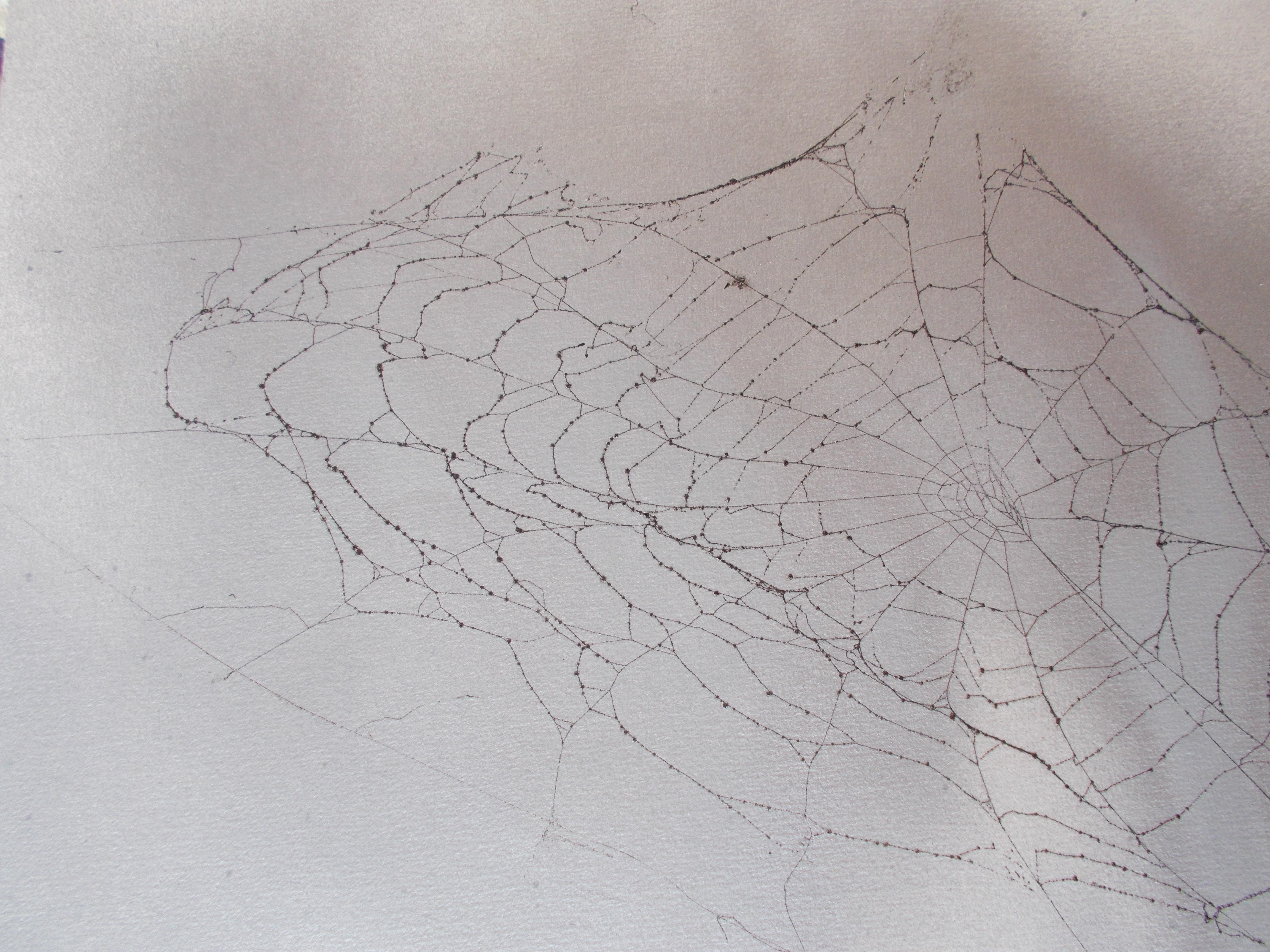 Netz im Nebel