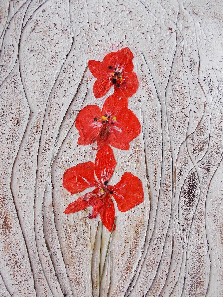 Gräser, Orchideen