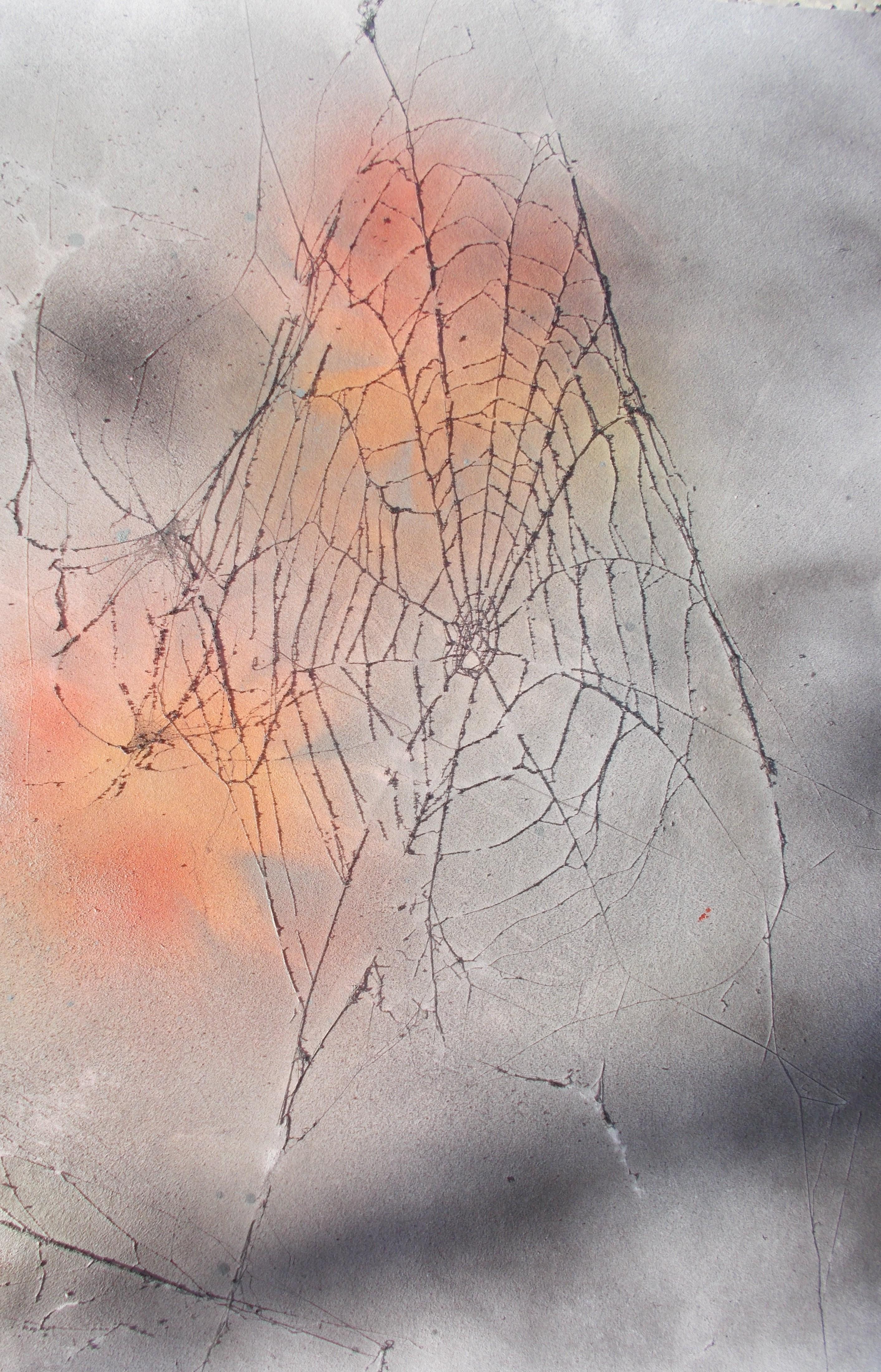 Netz im Morgenrot 40*50