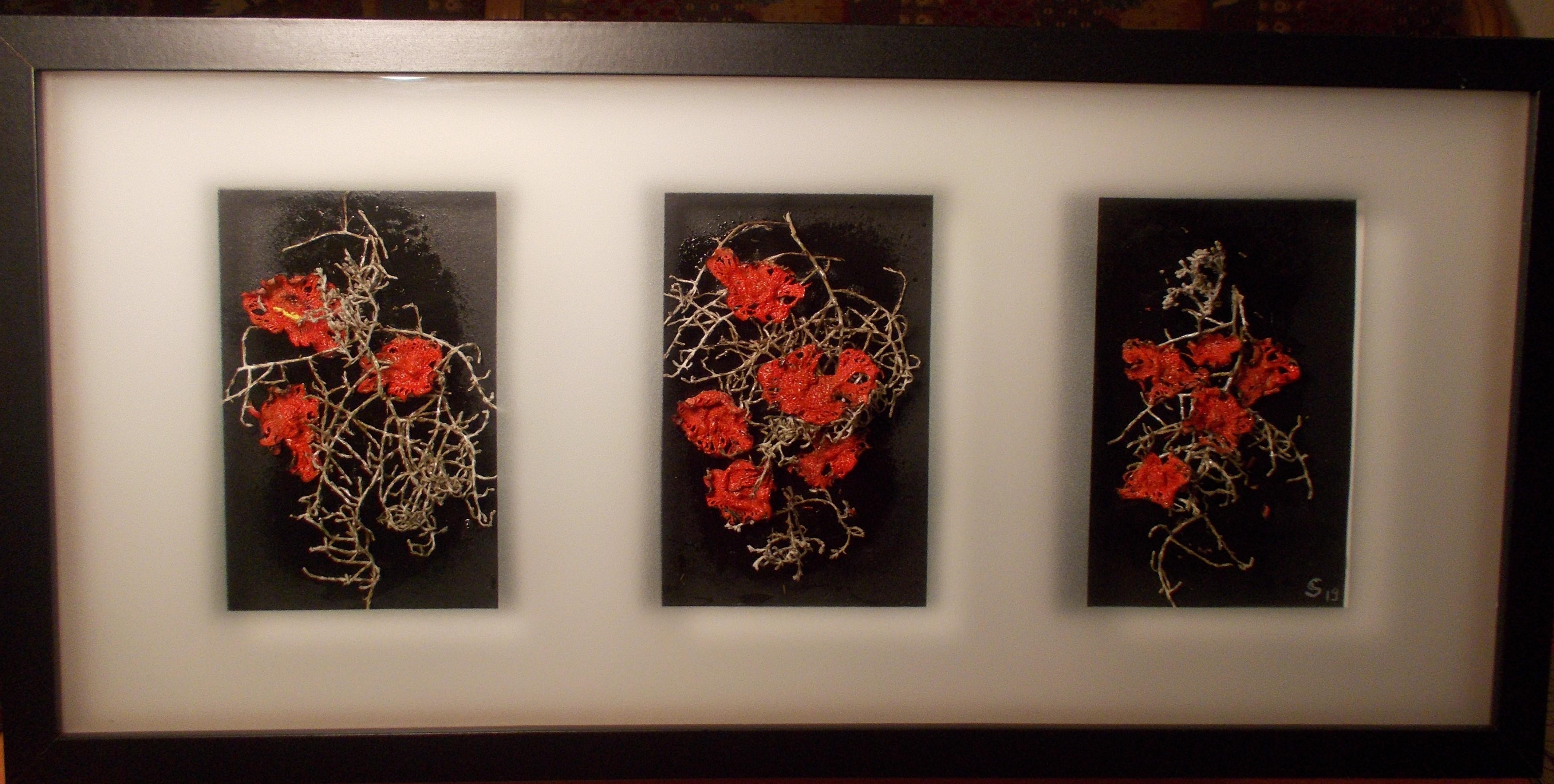 Blumen in der Nacht