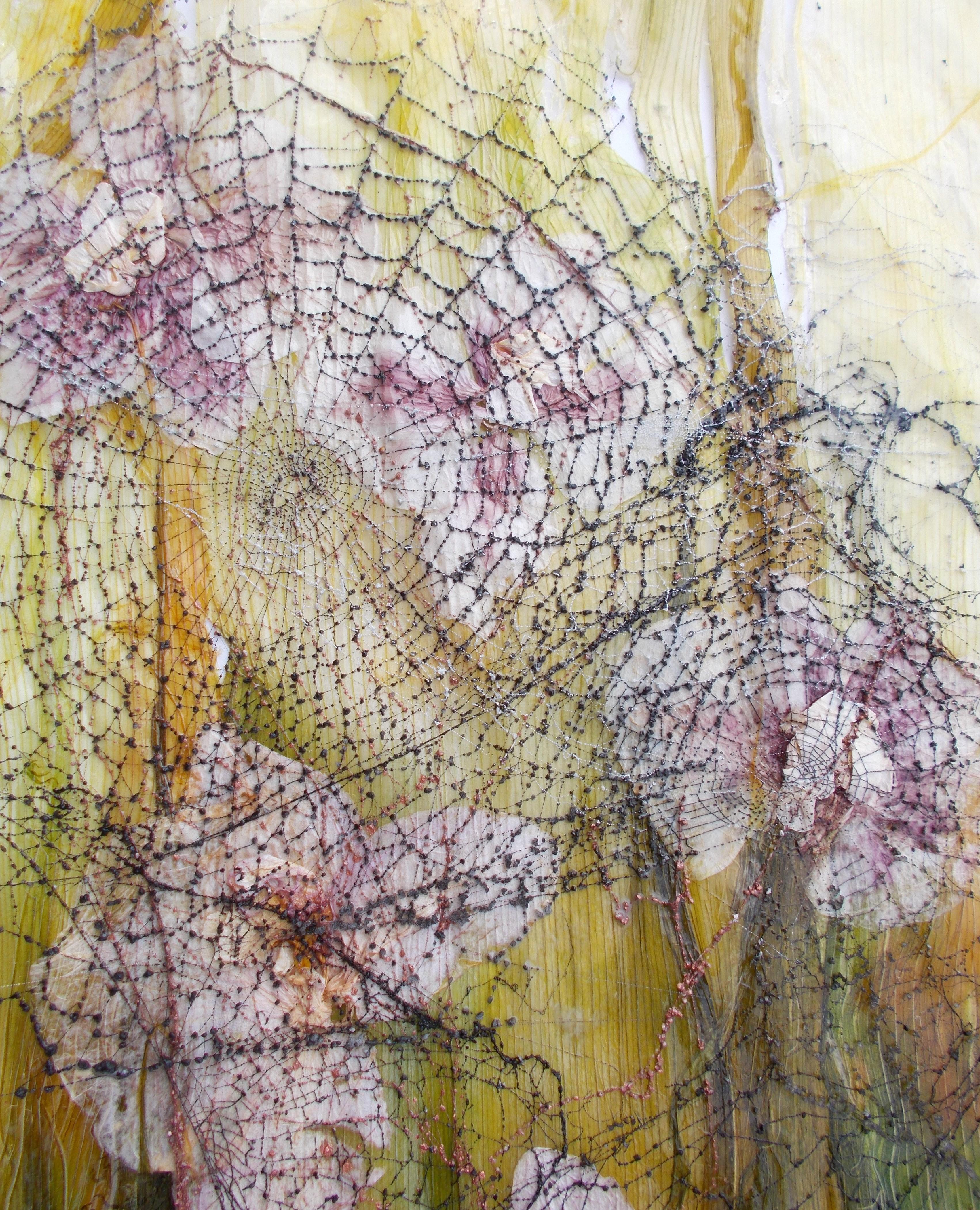 Faszination Spinnennetze Ausschnitt