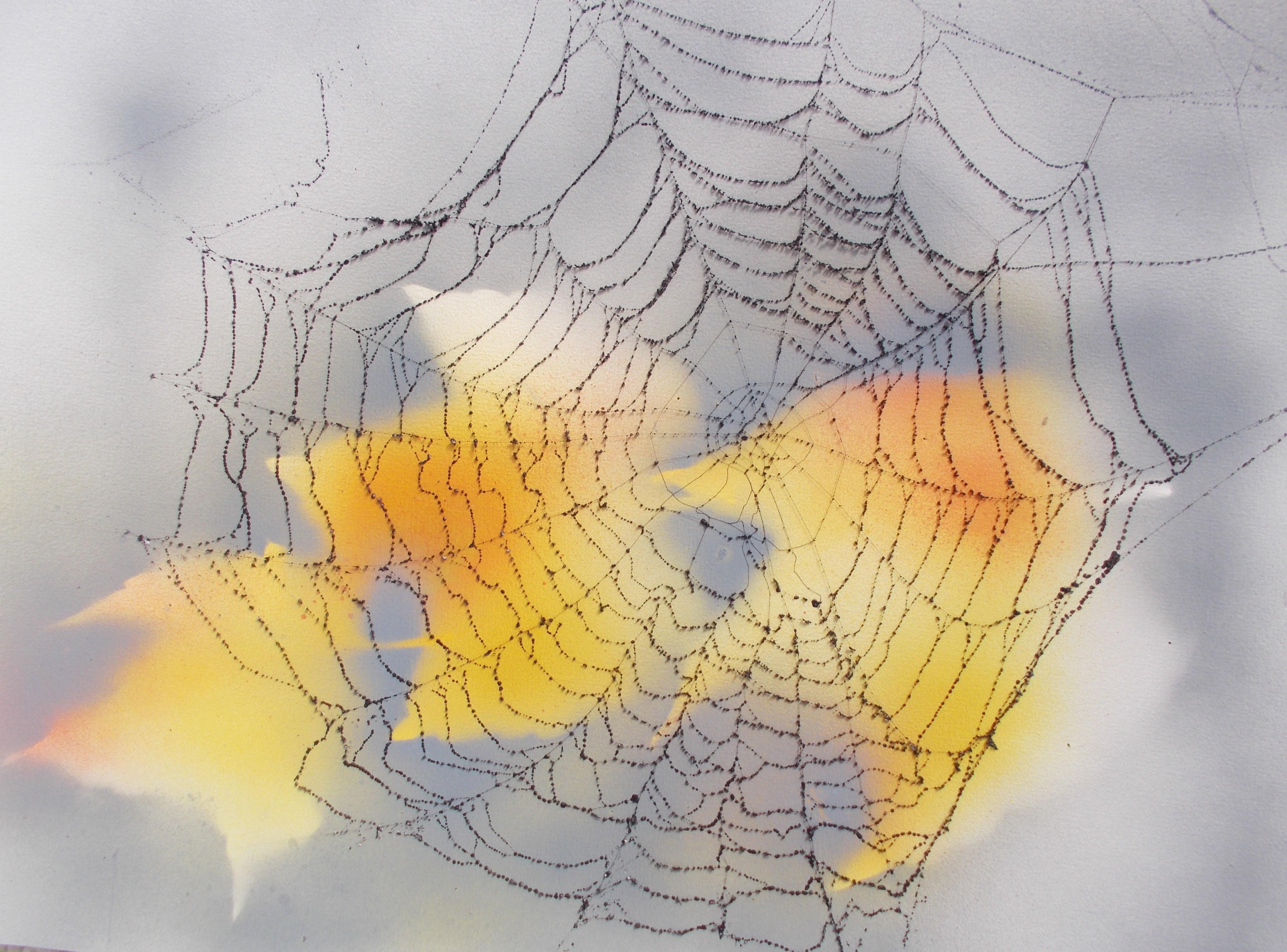 Herbstliche Lewitz 40*50