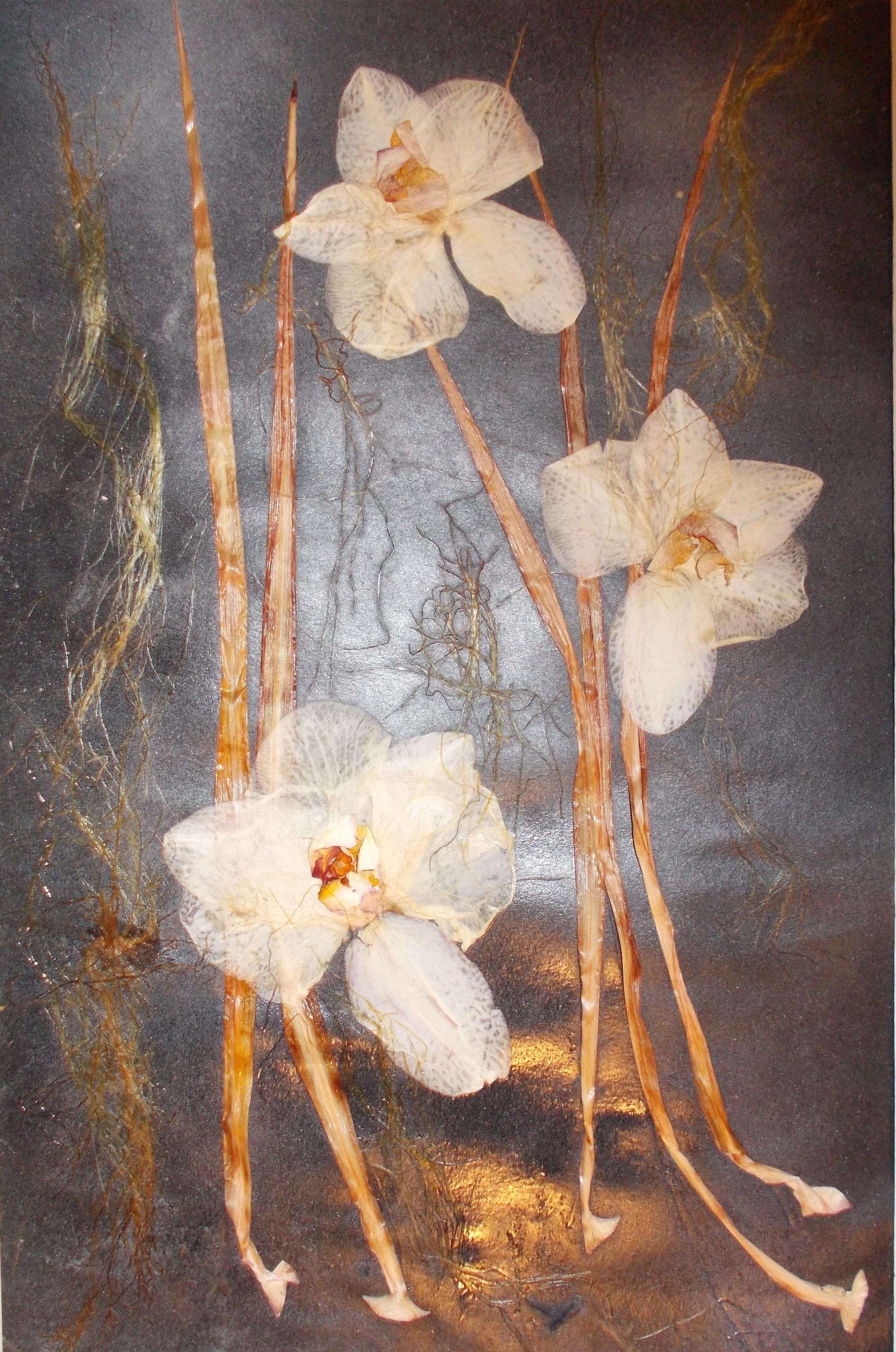 echte Orchideen und Blätter 30*40