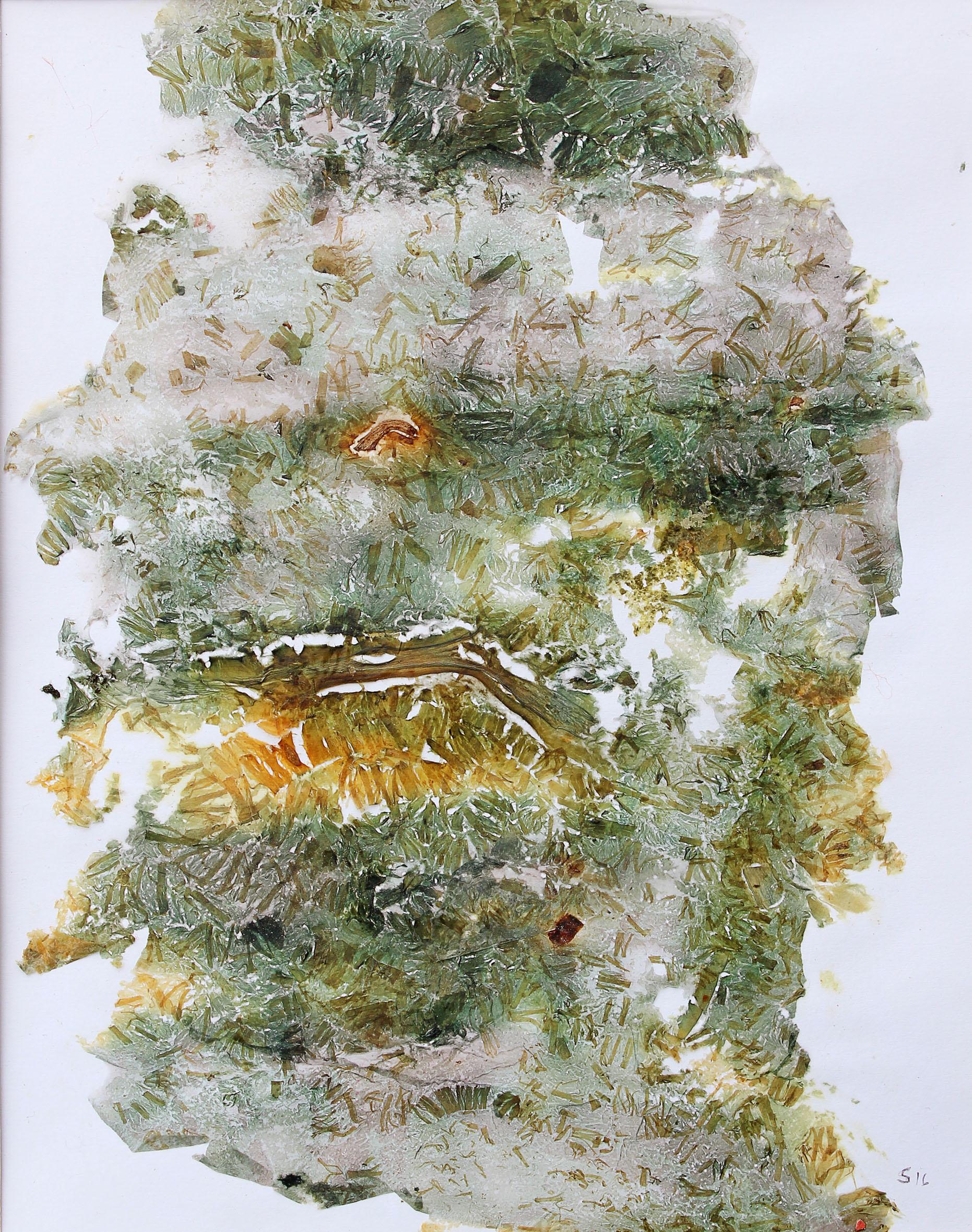 Pflanzenbrei aus unterschiedlichen Fasern