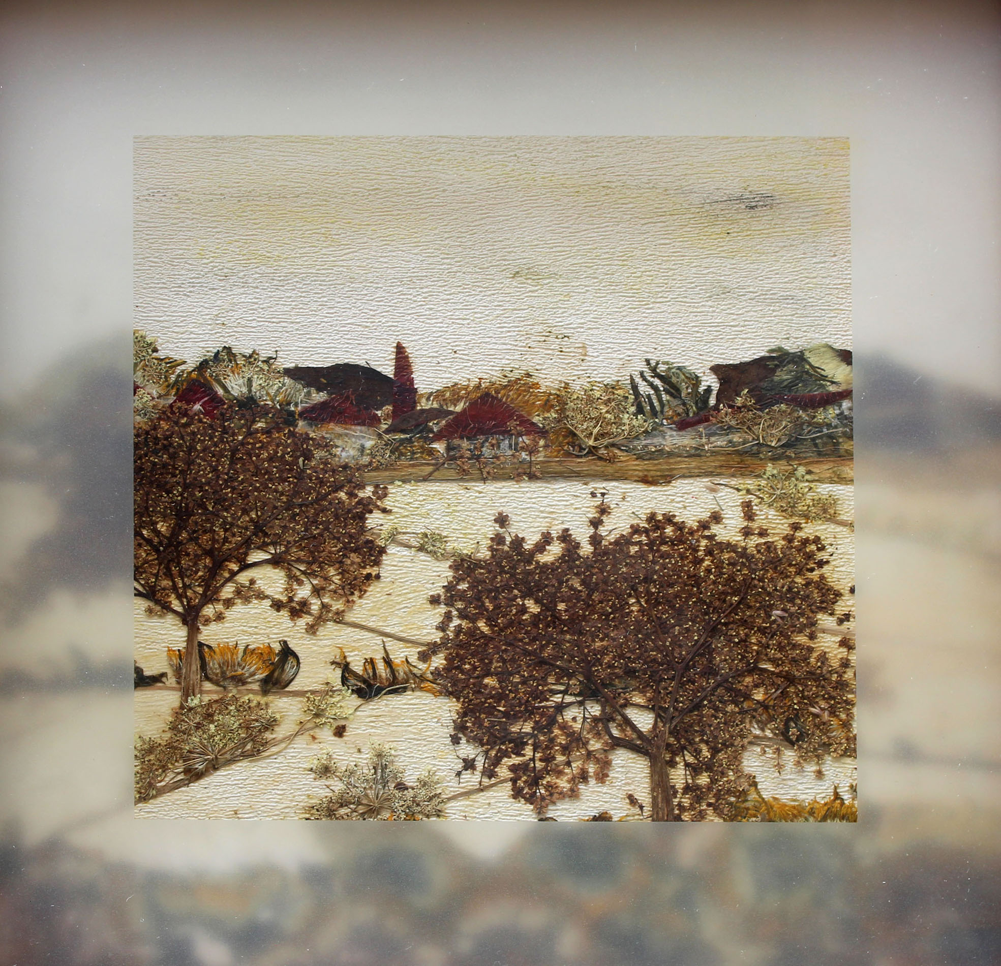 weiße Holunderblüten, Löwenzahn- Samenstände, Dill, Rosenblätter, Stangensellerie